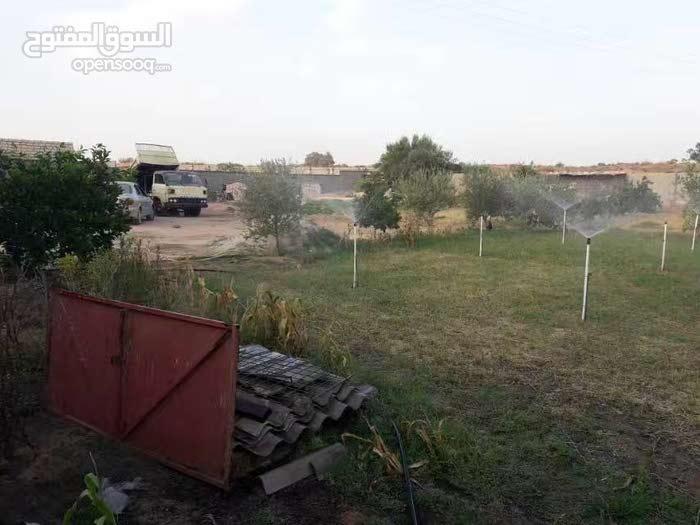 قطعة ارض للبيع مساحتها2000متر في ابوعيسي
