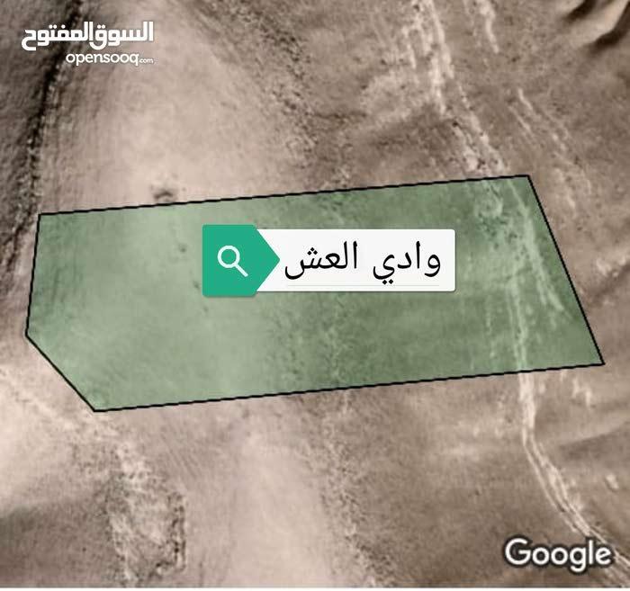 للبيع أرض مميزة 25 دونم في وادي العش