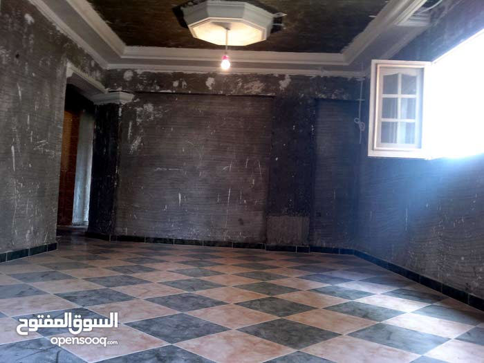 special apartment in Alexandria for sale
