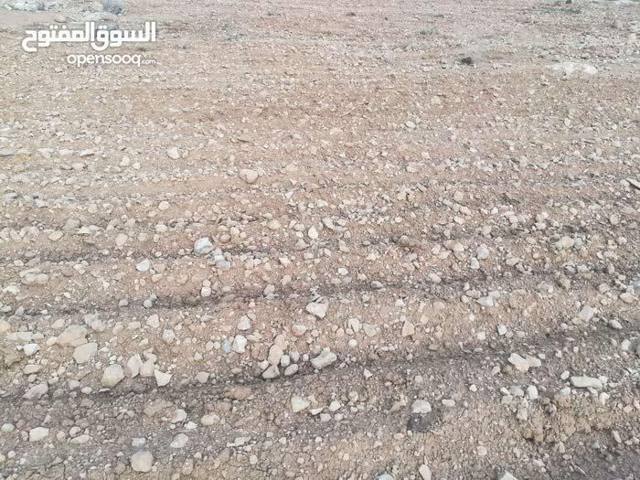 ارض اربع دنم شرق جرش في منطقة دحل