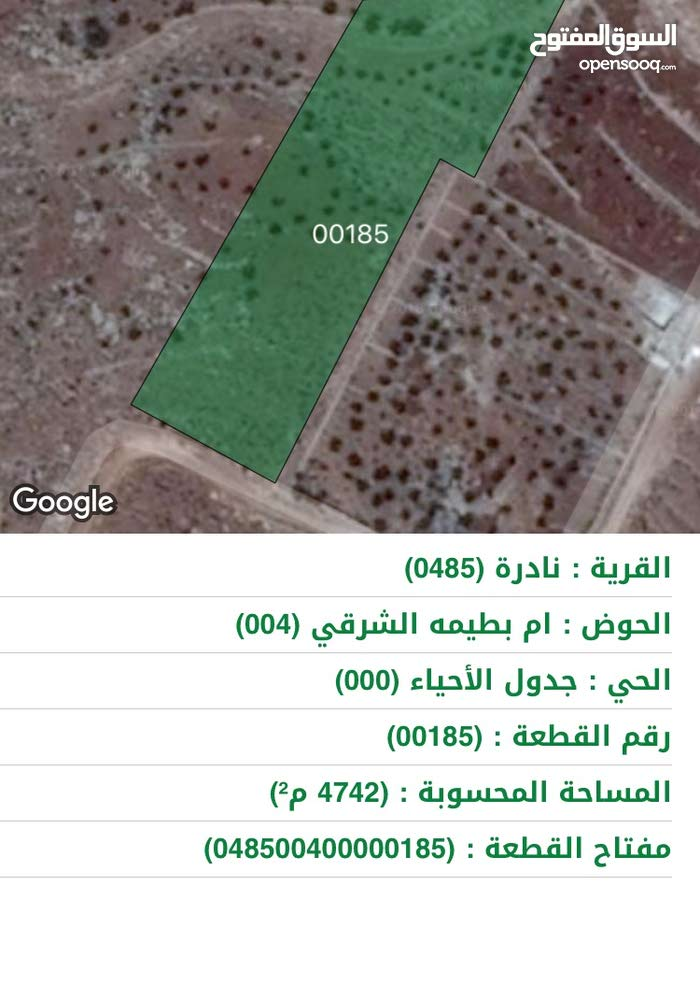 ارض للبيع في ام بطيمة الشرقي تبعد عن جرش 10 دقائق قرية نادرة