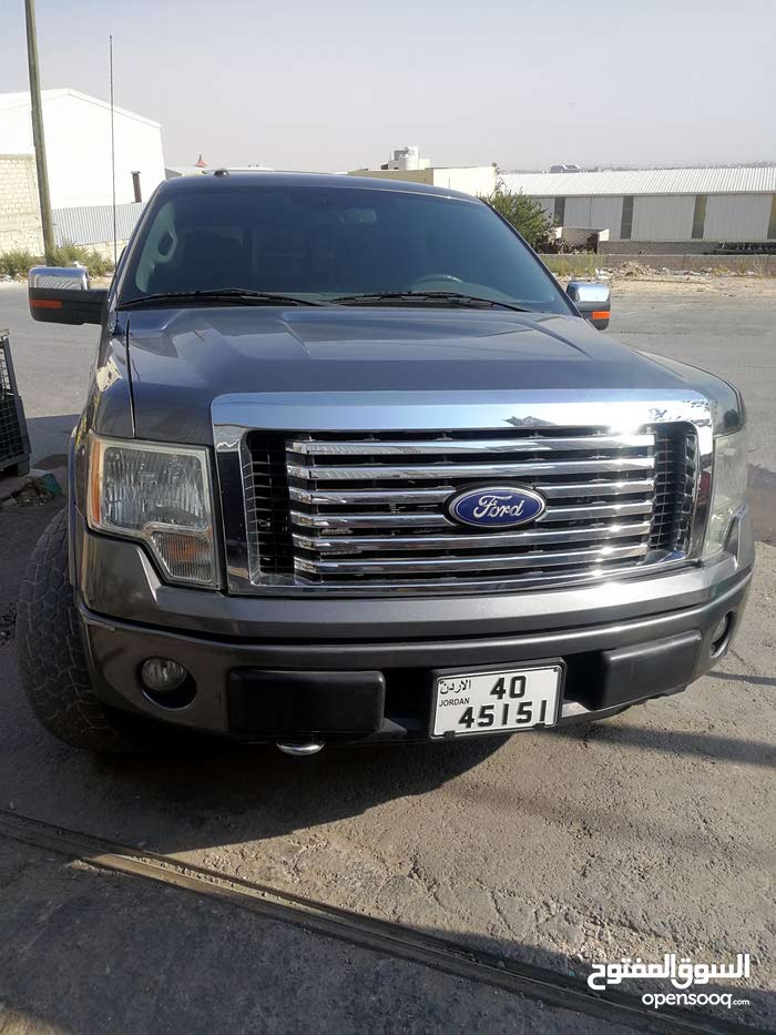 2010 Used Ford F-150 for sale