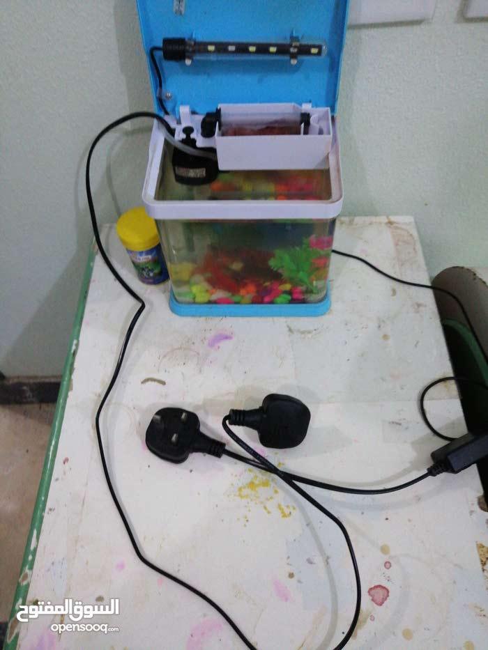 أحواض أسماك زينة