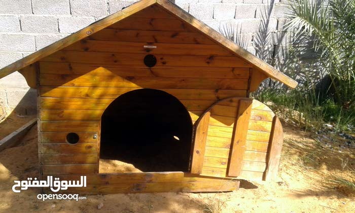 بيت كلاب للبيع لوح معالج