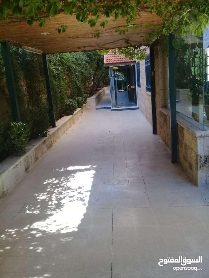 شقه للبيع أو للايجار ارضية مع حديقة  فارغة في عرجان