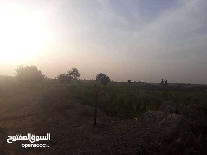 ارض زراعيه علي راس الترعه مباشر مسجله الارض عقد اخضر ولها بطاقه حيازه