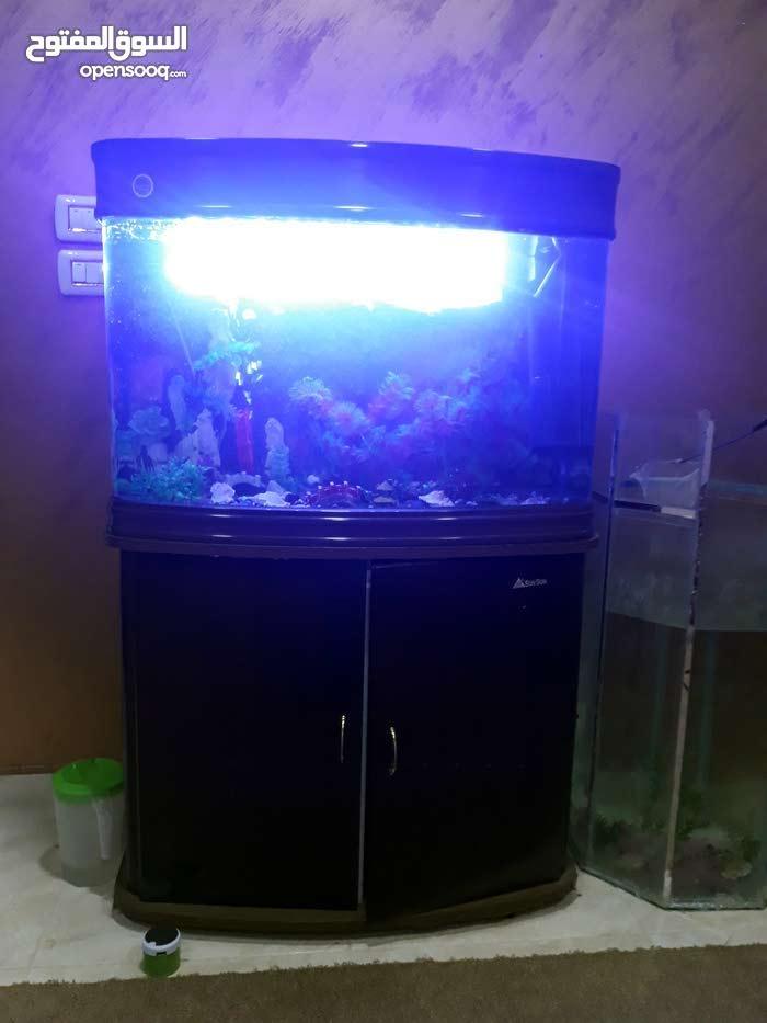 حوض سمك اجنبي للبيع او البدل