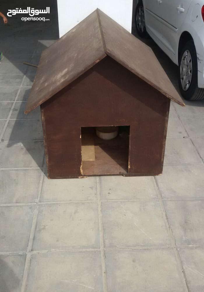 منزل كلب للبيع بسعر مغري