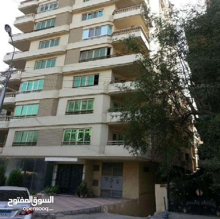 شقة غرفتين للايجار بشارع عمار بن ياسر