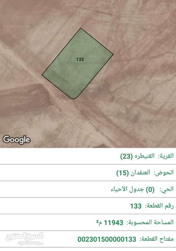 القنيطرة, جنوب عمان، بجانب مطار الملكة علياء الدولي, 12 دونم