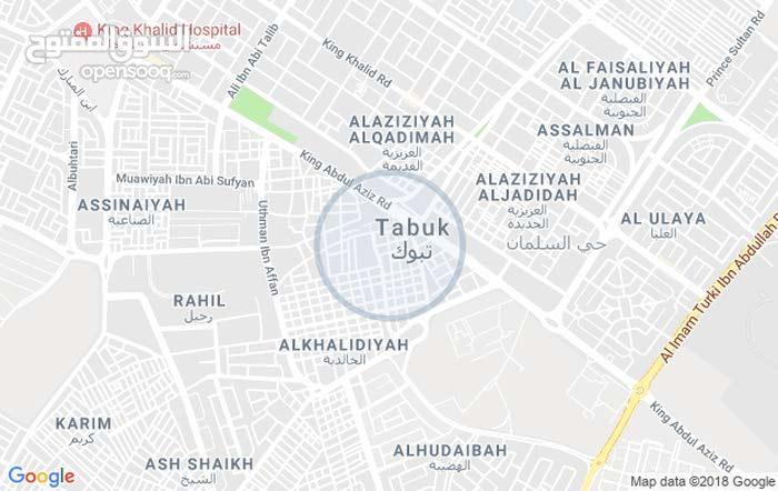 Apartment property for rent Tabuk - El Mansheyya El qademah directly from the owner