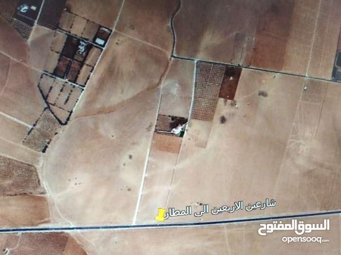 اراصي جنوب عمان ام رمانة الجحاوشة 4900م