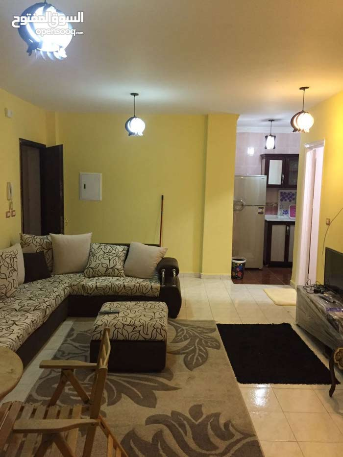 apartment in Cairo for rent