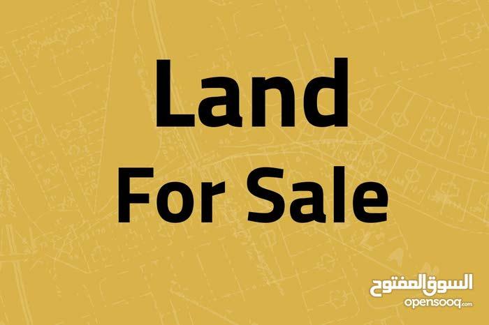 ارض للبيع في الظهير