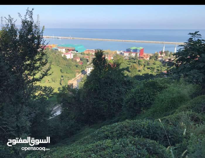 ارض للبيع في الشمال التركي طرابرون