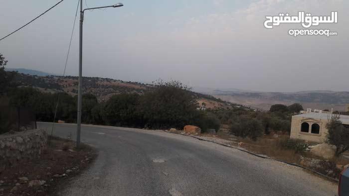 مزرعه للبيع مع بيت ريفي 50متر مشجره مطله على جبال فلسطين جميع الخدمات متوفرة