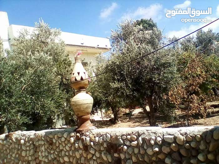 First Floor  apartment for sale with More rooms - Al Karak city