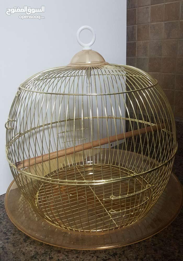 Birds cage in a unique design.