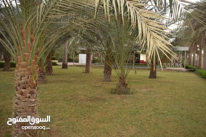 إســـتراحـة* *ســـــما*  Sama Resort