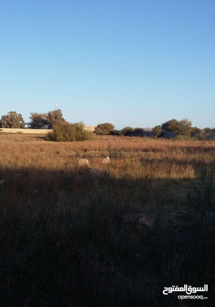ارض للبيع بتاجوراء مسحتها 2هكتار مسيجة على طريق قطران وقريبة من ساحلي