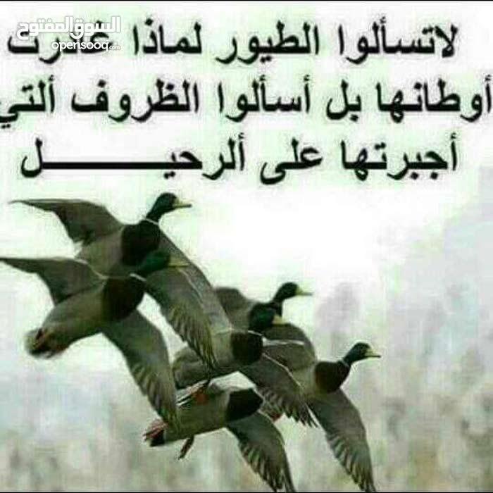 اسلام عليكم انا حارس  عماره يمني عطل عن عمل