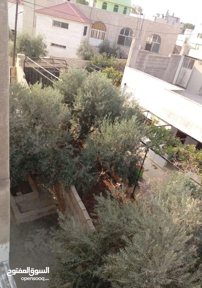 بيت مستقل للبيع _ اربد _ النعيمه