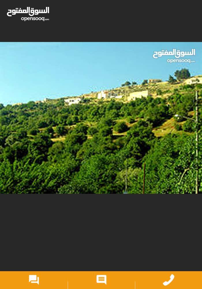 للبيع في السلط زي اجمل خمسه دنم وربع مطله على جبال فلسطين
