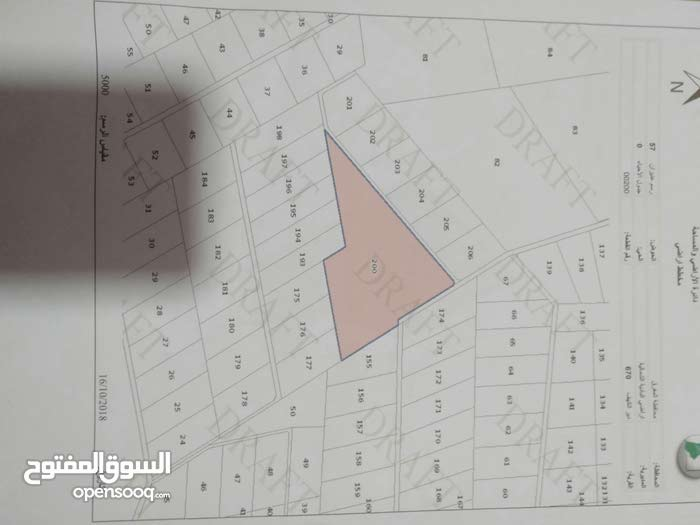 ارض للبيع 63دونم ديرالكهف حدود التنظيم مباشره