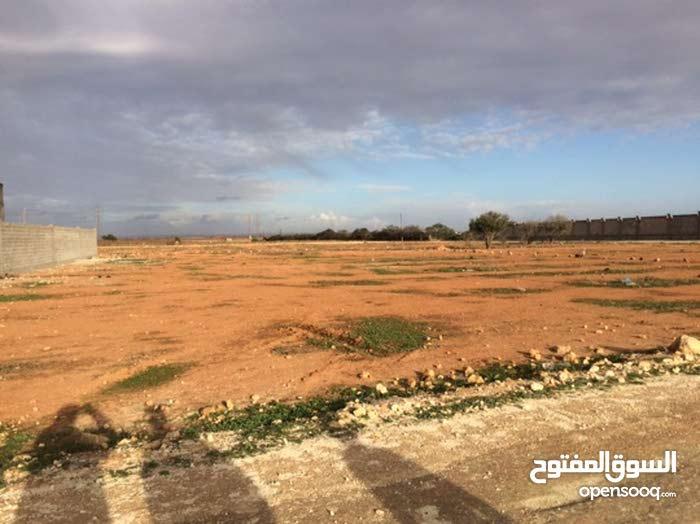 ارض ربع هكتار في الطلحيه بعد الجامع الثاني
