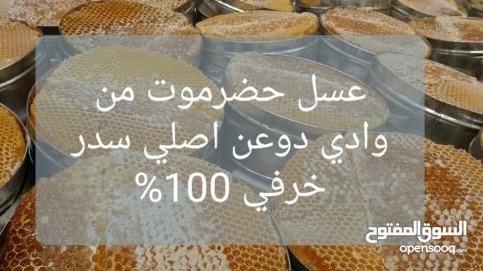 عسل يمني سدر