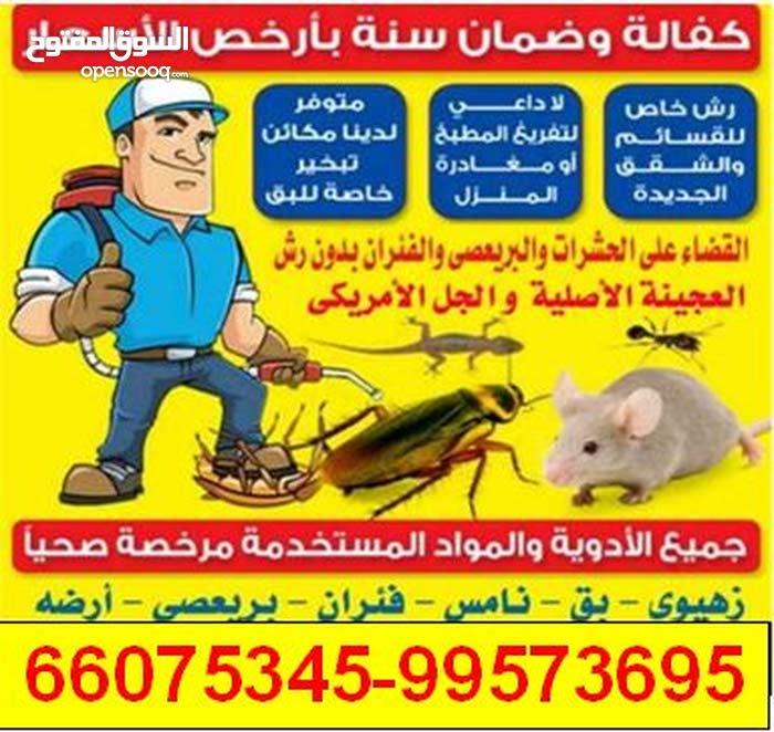 شركة الزامل لمكافحة الحشرات 95573695 والقوارض مضمون100%