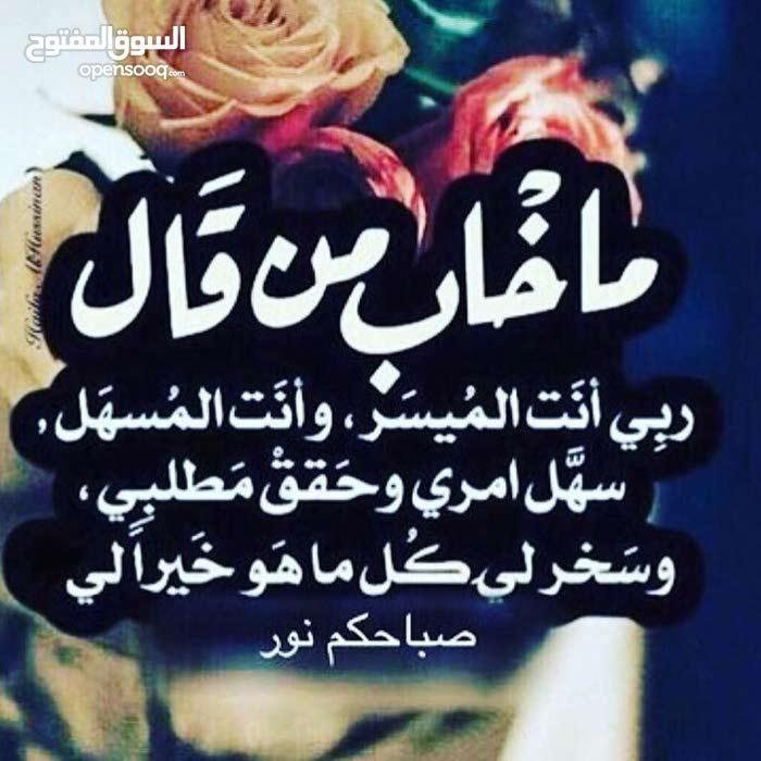 انا معلم بسطه حمص وفول ابحث عن عمل صباحي بمنطقه الزرقا۽