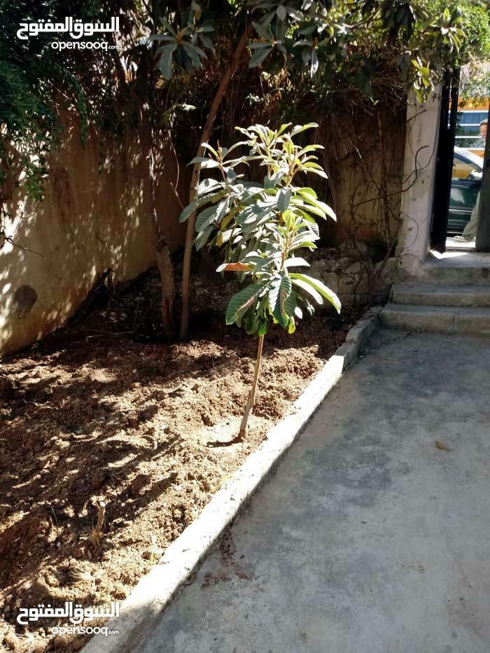 3 rooms  apartment for sale in Amman city Ras El Ain