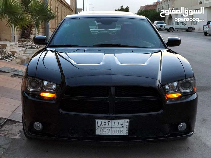 Gasoline Fuel/Power   Dodge Charger 2013