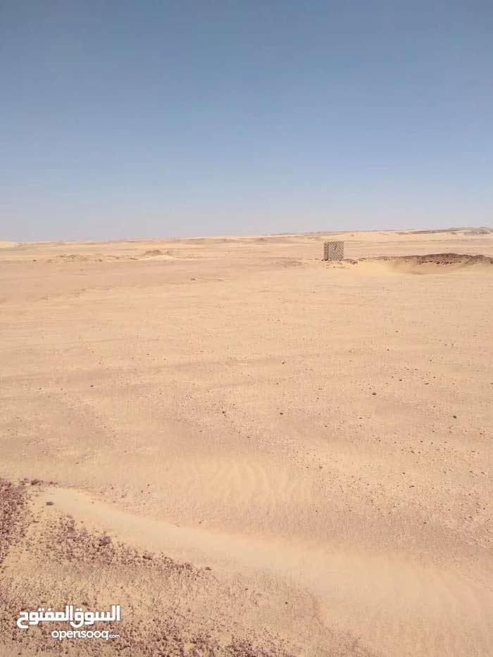 أرض زراعية للبيع في محافظة الوادي الجديد - مصر