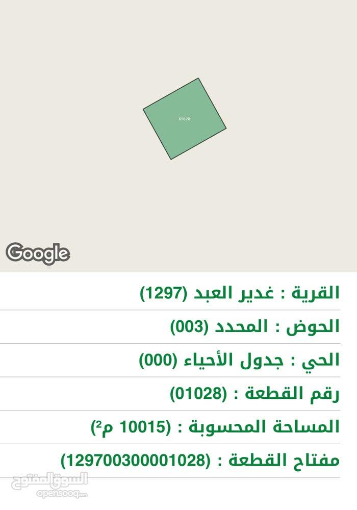 ارض للايجار او للبيع بالمفرق البادية الشمالية قرية غدير العبد