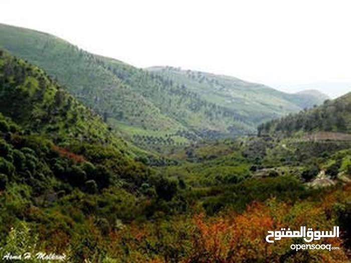 قطعة أرض في منطقة ناعور قريبة من كازية السلام على تلة مرتفعة ذات اطلالة غربية وخلابة للبيع