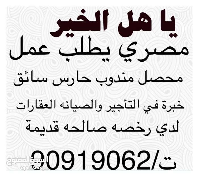 مصري يطلب عمل مندوب مراسل محصل حارس سائق موزع مشرف