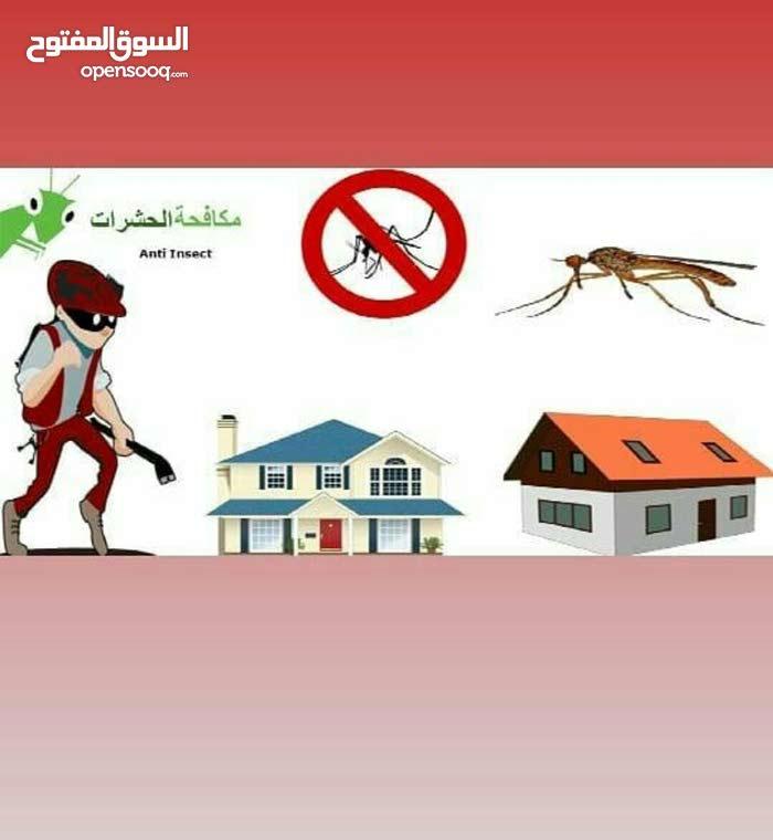 مكافحت الحشرات للصرصير الاماني والامريكي