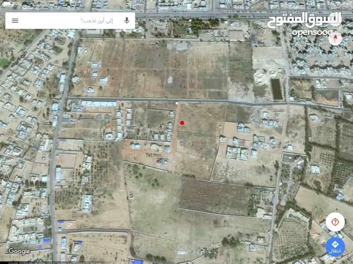 قطعة ارض سكنيه بالقرب من مزرعة ابوعليجيه