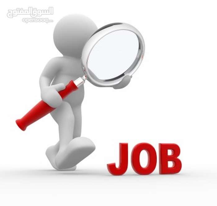 أبحث عن فرصة عمل