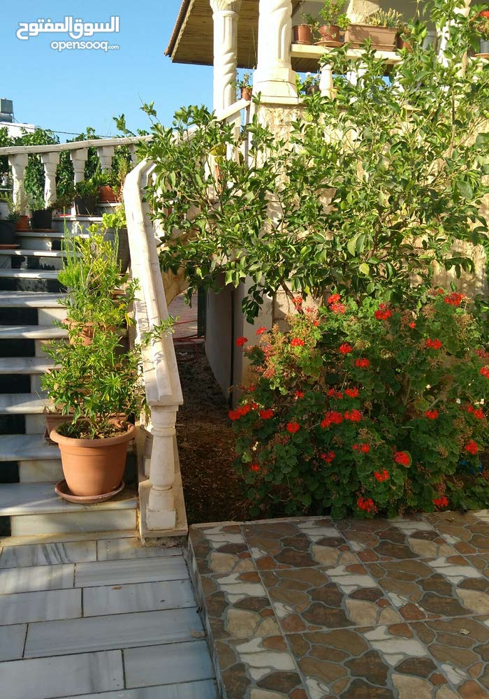 5 rooms  Villa for sale in Irbid city Al Husn