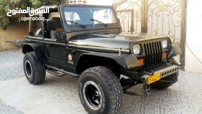 Jeep Wrangler 1995 For Sale