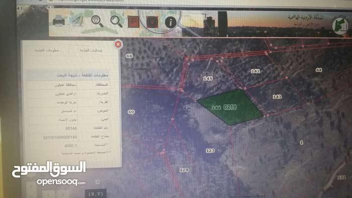 ارض للبيع في خربة الوهادنة مساحة 4 دونم