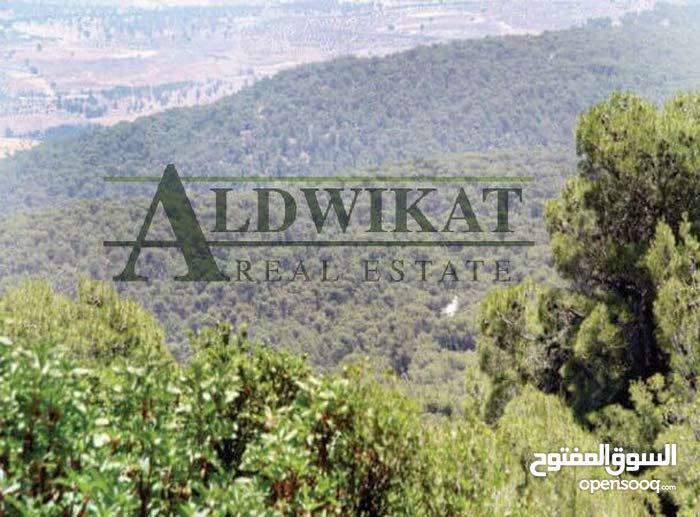 ارض مميزة للبيع في طريق المطار (الضهير) , مساحة الارض 750م
