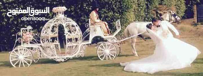 كارتة سندريلا وسيارات زفاف للتصوير ميديا والافراحوميكروباصات