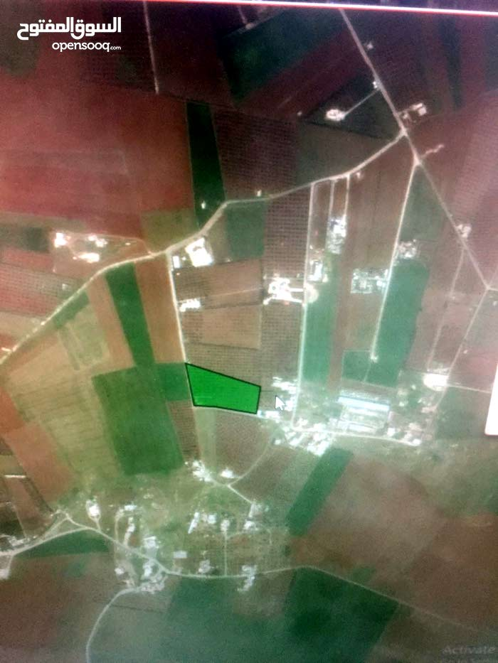 ارض للبيع في ناعور / خلف جامعة الزيتونة