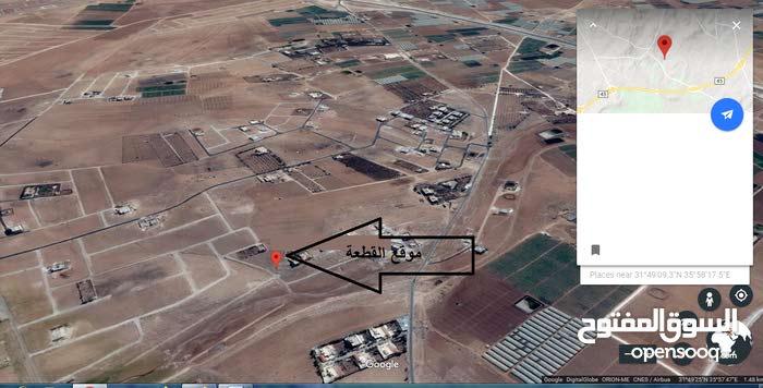 قطعة أرض مميزة للبيع في القليب ( جنوب عمان ) 1057