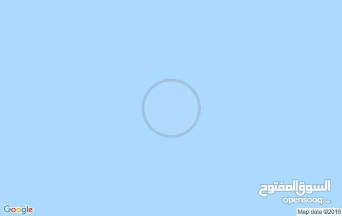 للبيع 53 شجرة الزيتون طريق تونس سيدي صالح