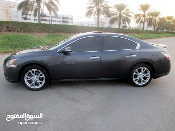 Grey Nissan Maxima 2013 for sale